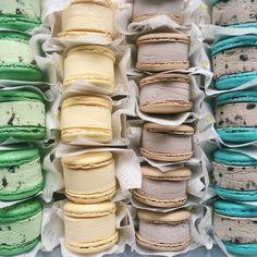 Yolkin macaron ice cream sandwiches