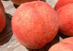 今年もおいしい桃が食べれます。  果物はもはや一つの芸術品のように艶やかで美しくて食べてしまうのはもったいないのですが  腐らせてしまうくらいなら私の体に吸収して血肉としようと思います。