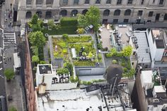 Aerial View Of New York City's Hidden Roof Top Garden Oases [18 Photos] - The Roosevelts