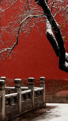 ...Zen > WabiSabi < Zen... Chinese Design, Chinese Art, Chinese Style, Traditional Chinese, China Architecture, Oriental, Peking, Chinese Element, Mood Images