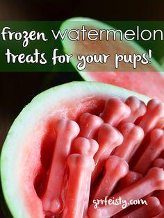 DIY Frozen Watermelon Dog Treats - perfect for summer!