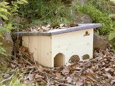 Un abri bien pensé, à installer dans les jardins pour favoriser l'installation des hérissons.