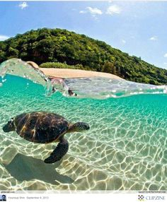 The Best Beaches in Hawaii