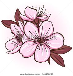 Cherry blossom. Decorative floral illustration of sakura flowers. Raster version. Vector is also available in my gallery