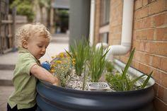 Deszczoogródki to świetne rozwiązanie na wykorzystanie deszczówki w mieście. Woda zamiast spływać bezpośrednio do kanalizacji, może trafić do takiego ogródka, specjalne warstwy grządek przefiltrują ją z zanieczyszczeń, jednocześnie podlewając miejskie rośliny.  Źródło: raingardens.melbournewater.com.au