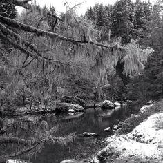 Molalla Oregon Hills...took this pic a few yrs back