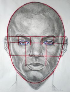how to draw phase portrait