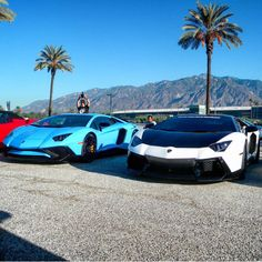 Lamborghini Aventador Super Veloce Coupe painted in Blu Cepheus and a Lamborghini Aventador Coupe painted in Bianco Isis with the roof, trunk and engine cover wrapped in gloss black   Photo taken by: @exoticcardaily on Instagram
