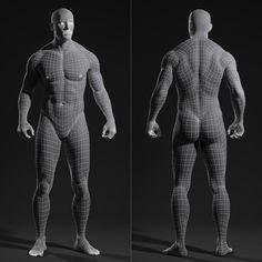 male body topology에 대한 이미지 검색결과