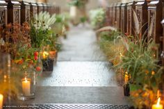 Zita Elze Wedding Flowers - grasses, echinacea, physalis anigozanthos and sedum with thistle, craspedia and parsley. Photography Julian Winslow 6989_wm