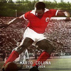 Mário Coluna 1935-2014