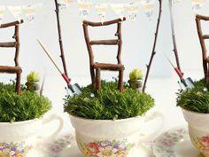 Te ensañamos a hacer un jardín miniatura en una taza