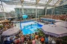 Bis zu 24.000 Zuschauer fieberten bei der EM am Wochenende live vor Ort mit.
