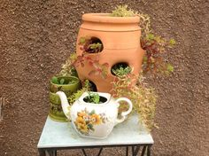 Drill holes into the teapot and old canisters and you can keep them outside.