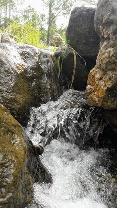 #forest #landscape #green #organic #three #picture #fantastic #greatfut #life #live #water #natural #naturally #naturaleza #hermosa #vida #bosque #oxígeno #verde #rocas #mineral #agua #salvaje #paz #amor #peas #sun #picture #beautil #sunset #amanecer #crepúsculo #lake #lago #walk #vidasana #cascada #caracol #rocas #rocks #water #ARGENTINA
