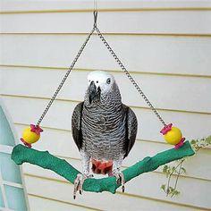 LANDUM Hamster Platform Perch Pet Parrot Stand Rack Toys Rat Squirrel Springboard Cage Light Green