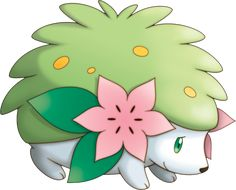 #shaymin #pokemon #anime #pocketmonsters