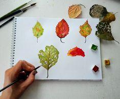 Botany, Biology, Plastic Cutting Board, Illustrations, Illustration, Ap Biology, Illustrators