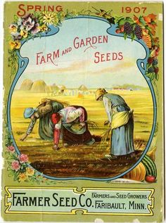 The front cover image on the Farmer Seed & Nursery 1907 catalog appears almost biblical. Women in long dresses and headscarves are shown gleaning in a wheat field. But the dainty border surrounding the image brings the scene back to focus with roses, pansies, grapes, and vegetables surrounding the bucolic view. Farmer Seed & Nursery originated in Faribault, MN in 1888. Andersen Horticultural Library hosts a collection of vintage Farmer Seed & Nursery catalogs.