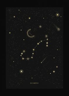 Cancer Constellation Cancer zodiac constellation gold metallic foil print on black paper by Cocorrina Scorpio Constellation Tattoos, Constellation Art, Scorpio Signo, Cancer Zodiac Art, Leo Zodiac, Zodiac Signs, Scorpio Zodiac Tattoos, Scorpio Scorpio, Sky Pink