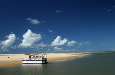 Ilha dos Namorados, próximo a Aracaju (foto: Eduardo Vessoni)