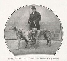 DPLB : biblio française depuis 1863/deerhoundspourlesbleus