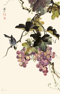 Chinese Brush Painting: grapes & bird