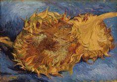 Vincent van Gogh - Dois Girassóis Cortados - 1887