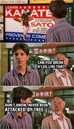 The Karate Kid 1984, Karate Kid Movie, Karate Kid Cobra Kai, Movie Quotes, Funny Quotes, Movie Memes, Hilarious Memes, Best Dad Jokes, Good Jokes