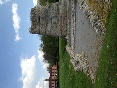 Parco dell'Agenzia di Pollenzo. Resti dell'impianto termale e del torrione dell'epoca romana #invasionidigitali