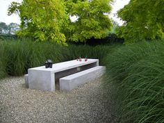 Robinia, ornamental grasses and concrete furniture