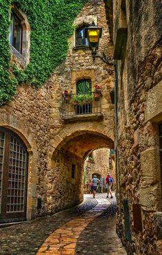 Medieval portal in P