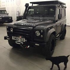 #defender #defender90 #defender110 #defenderitalia #defender_life_style #defender_for_ever #offroad #4x4 #landrover #landlovers #landroveritalia #searchandrescue #landroverdefender #picoftheday #follow #instalike #defenderlove #td5 #td4 #ilovelandrover #leggenda #offroaditalia #offroadlife #extreme #dogs #puppy #puppylove by _defenderdogs_ #defender #defender90 #defender110 #defenderitalia #defender_life_style #defender_for_ever #offroad #4x4 #landrover #landlovers #landroveritalia…
