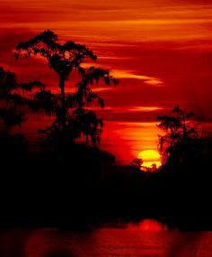 Beautiful Gulfcoast sunset Gulf Of Mexico, Coast, Celestial, Sunset, Outdoor, Beautiful, Outdoors, Sunsets, Outdoor Games