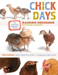 Chick Days: An Absolute Beginner's Guide to Raising Chickens from Hatchings to Laying Hens