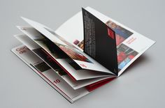 HOT-HED Argentina. Corporate Brochure. by Hachetresele Studio, via Behance