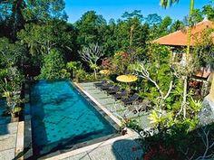 Abing Terrace Resort - Retreat Centre Bali - Swimming pool  affordable, great view, lokasi mencil Ubud Hotels, Hotel Reviews, Terrace, Centre, Swimming, Outdoor Decor, Home Decor, Sidewalk Cafe, Decoration Home