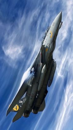 rocketman-inc:  F14 Tomcat