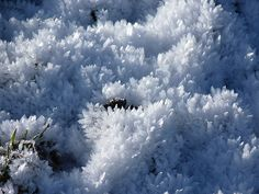 Ice crystals by FizzixIsFun, via Flickr Ice Crystals, Our World, Frost, Patterns, Colors, Nature, Outdoor, Collection, Block Prints