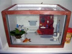 Fish tank...doing this right now!!!!!!
