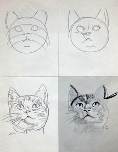 How to draw great cat faces!!...Can't wait to try this kitty painted on a rock!..I can never get them to look up like this!