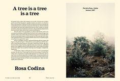 The Plant Journal #2   01 Magazine