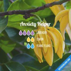 Anxiety Helper - Essential Oil Diffuser Blend