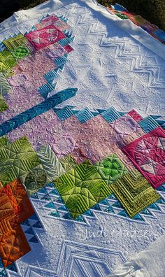 Tula Pink Butterfly pieced by Linda, quilted by Judi Madsen