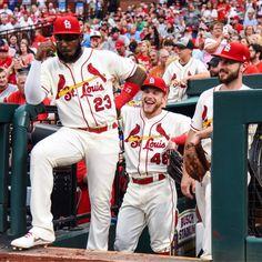 "St. Louis Cardinals on Twitter: ""Tonight's plan: ⚾️… "" Cardinals Players, Cardinals Baseball, Busch Stadium, Cincinnati Reds, Captain Hat, How To Plan, St Louis, Hustle, Twitter"
