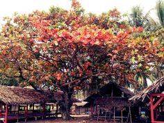 The most reflexing place, west sumatera, indonesia!