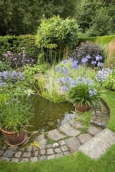 A pond supplies an exciting addition to any garden, even just a small one. A pond isn't something which is simple to move if, in a couple of years, you don't like its location. Including a little pond doesn't need… Continue Reading → Pond Landscaping, Ponds Backyard, Backyard Ideas, Garden Pond Design, Unique Garden, Landscape Lighting Design, Building A Pond, Diy Pond, Natural Pond