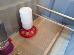 DIY Chick Brooder – On Hitching Post Lane