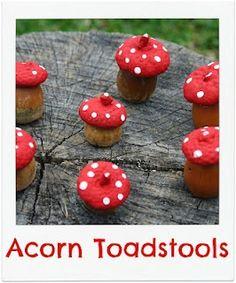 Eikel paddenstoeltjes