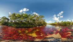 "Caño Cristales, Columbia – Cano Cristales is a Colombian river located in the Serrania de la Macarena, province of Meta. The river is commonly called ""The river of Five Colors"". Pamukkale, Death Valley, Mysterious Places On Earth, Monte Roraima, Beautiful World, Beautiful Places, Amazing Places, Earth Photos, Most Romantic Places"